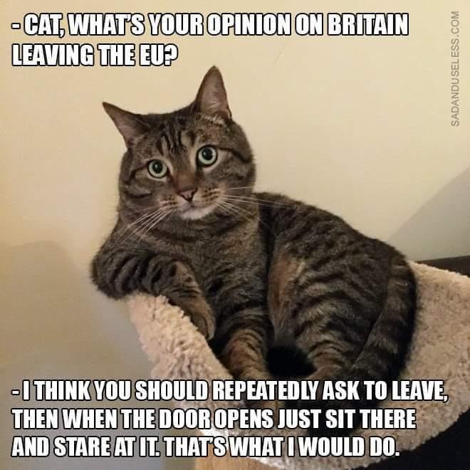 En de Brexit-soap gaat maar door
